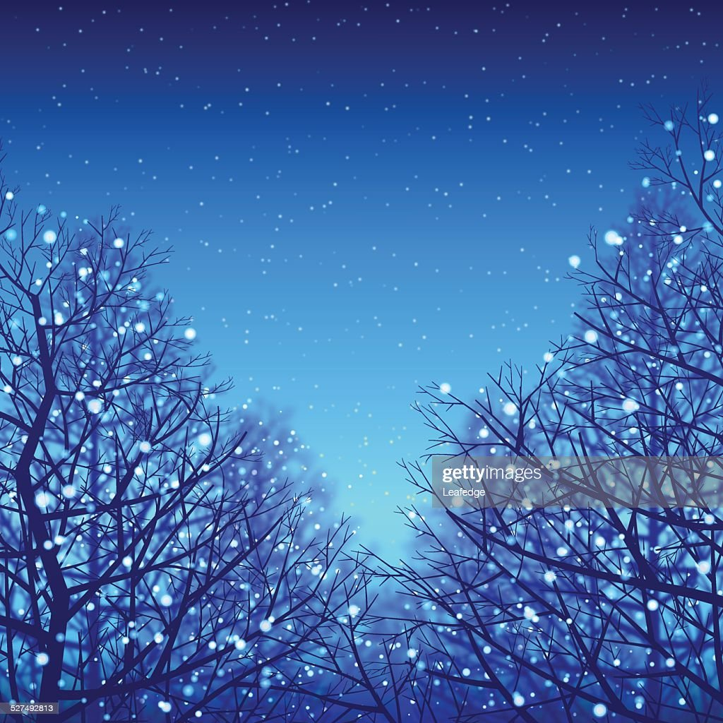 Winter background[Blue illumination and Deciduous trees]