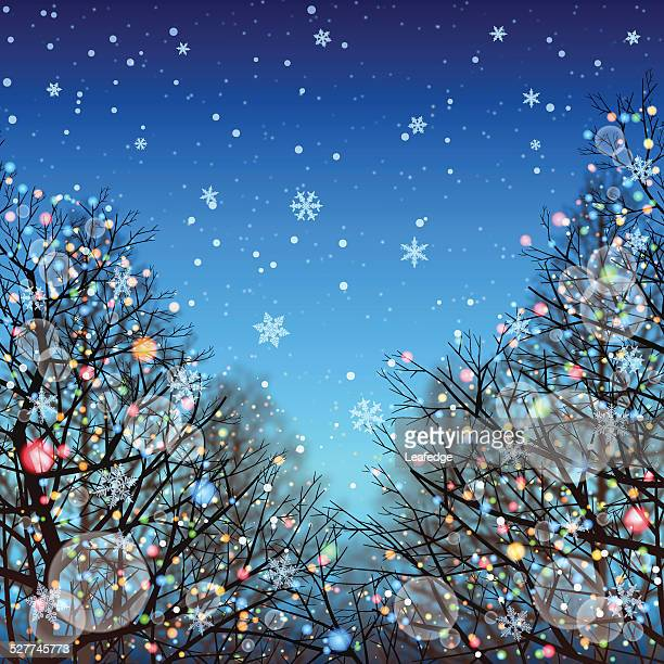 Winter background[Illumination and Deciduous trees]