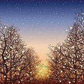 Winter background[Illumination and sunset]