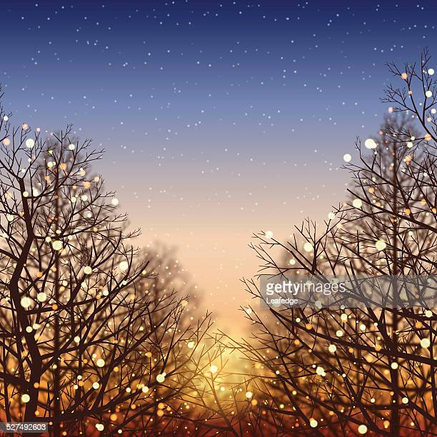 winter background[illumination and sunset] - lighting equipment stock illustrations, clip art, cartoons, & icons