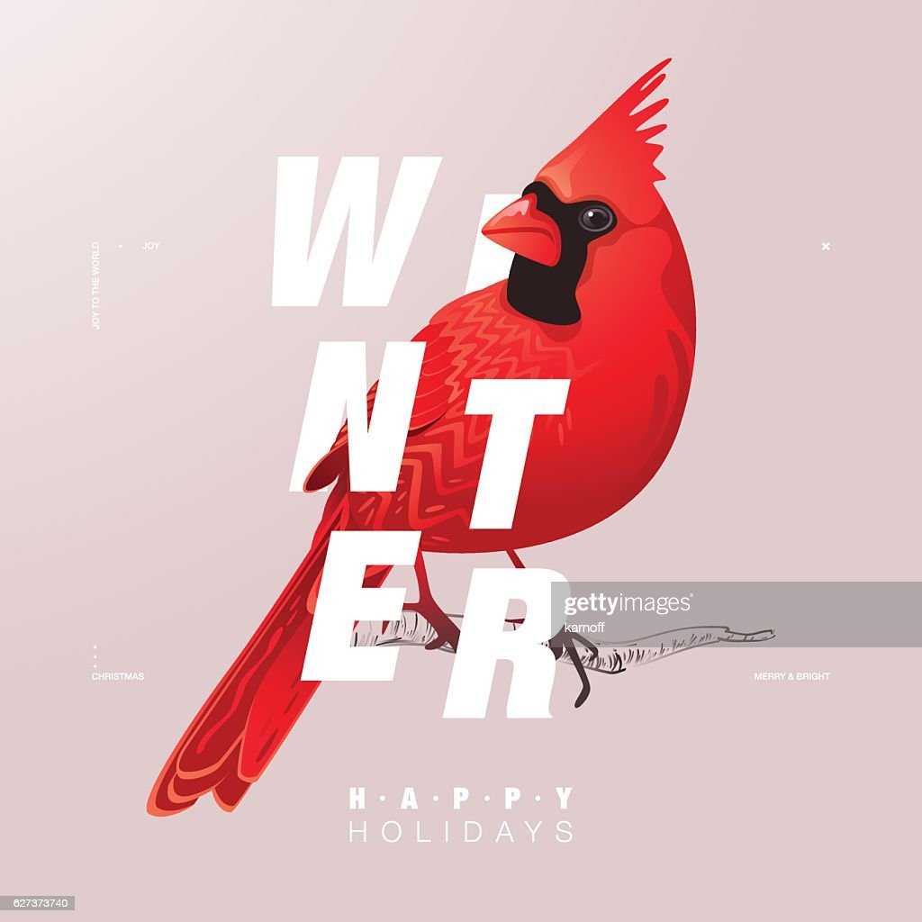 Winter Bird illustration