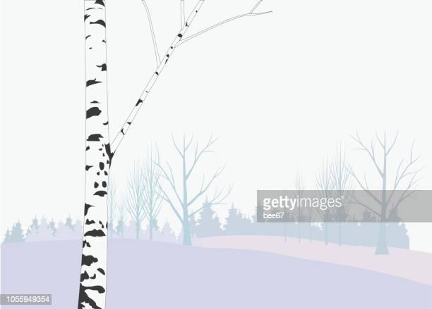illustrations, cliparts, dessins animés et icônes de journée d'hiver - illustration - illustration forest, blizzard, concepts & sujets, brouillard, image peinte - arbre sans feuillage