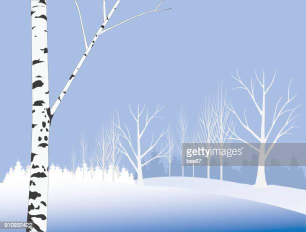 illustrations, cliparts, dessins animés et icônes de journée d'hiver - illustration - arbre sans feuillage