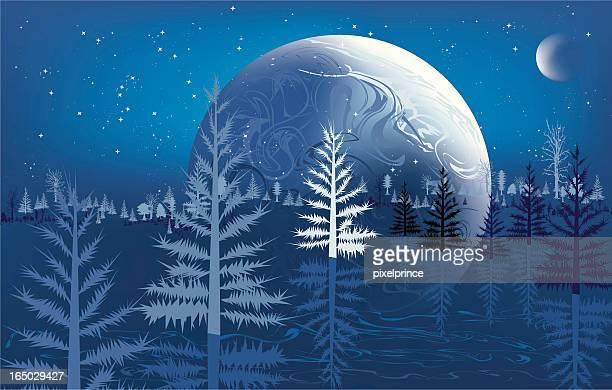 Winter Erde Leibhöhe (Magic!