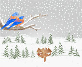 Winter landscape forest with snow with a branch of a tree and bluebird with feeder christmas theme natural background vintage vector illustration editable hand draw