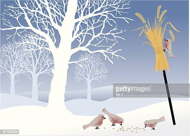 illustrations, cliparts, dessins animés et icônes de paysage d'hiver avec des oiseaux - arbre sans feuillage