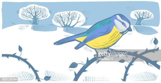 ilustraciones, imágenes clip art, dibujos animados e iconos de stock de de invierno paisaje con azul carbonero - fauna silvestre