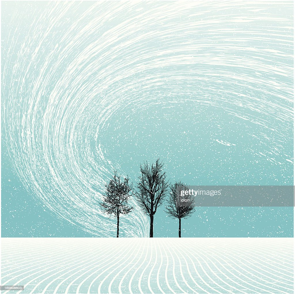 winter landscape with trees and blizzard