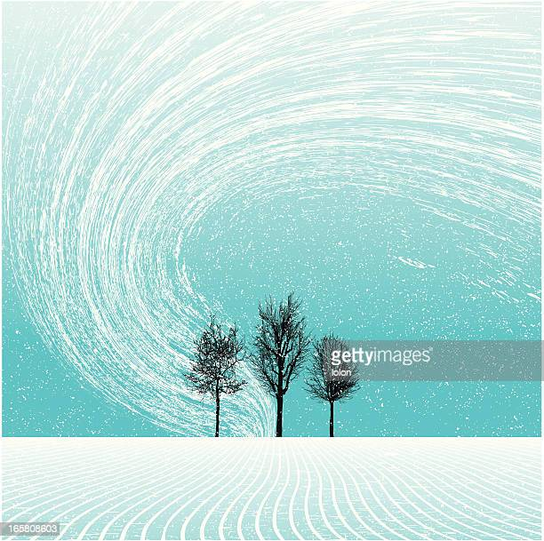 winter landscape with trees and blizzard - blizzard stock illustrations