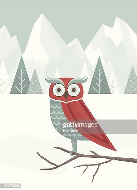 illustrations, cliparts, dessins animés et icônes de chouette d'hiver - chouette