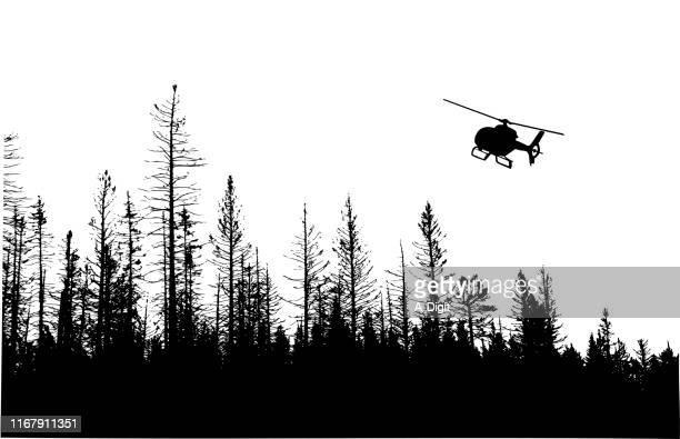 ilustraciones, imágenes clip art, dibujos animados e iconos de stock de winter pines treeline - helicóptero