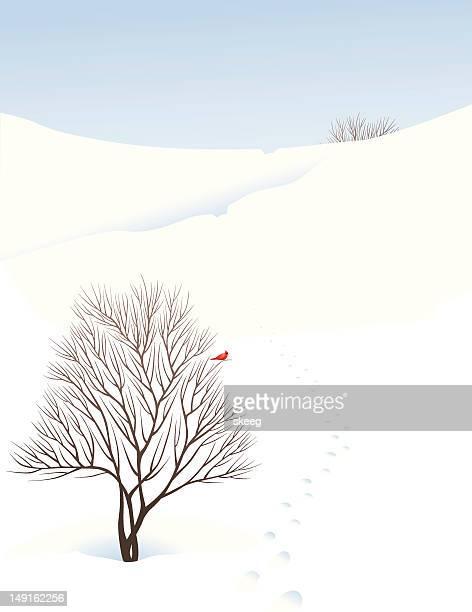 winter scene - cardinal bird stock illustrations, clip art, cartoons, & icons