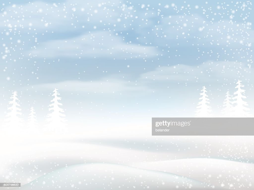 Winter snowy rural landscape
