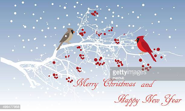 winter tree - cardinal bird stock illustrations