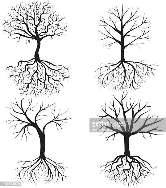 winter trees - deciduous tree stock illustrations, clip art, cartoons, & icons