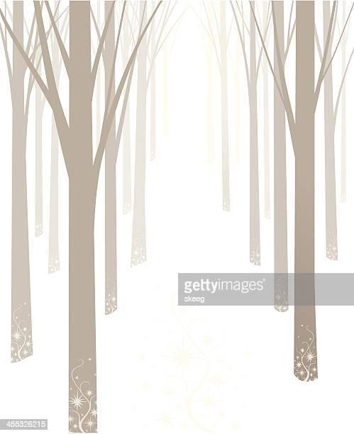 Alberi invernali