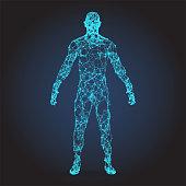 3D wire frame human body Polygonal Low Poly