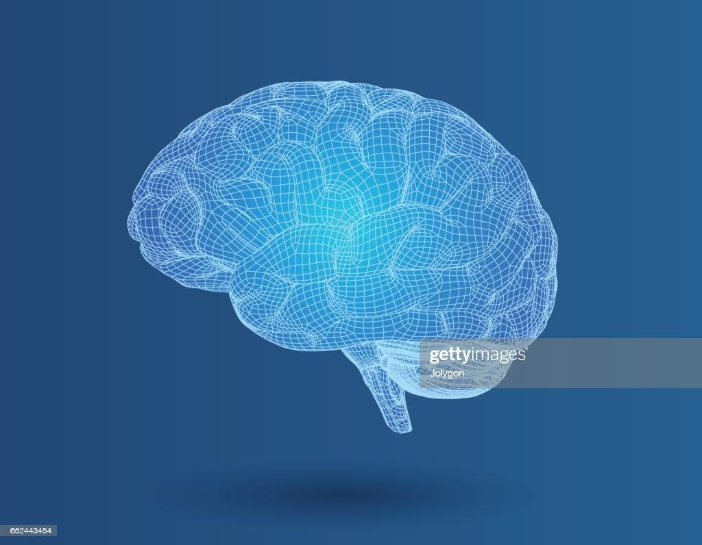 3d Drahtgitter Gehirn In Seitenansicht Auf Blauen Bg Vektorgrafik ...