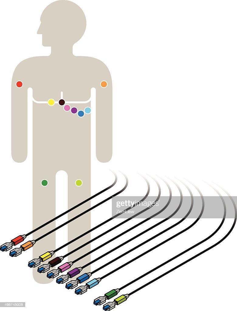 ECG / EKG Wiring Diagram