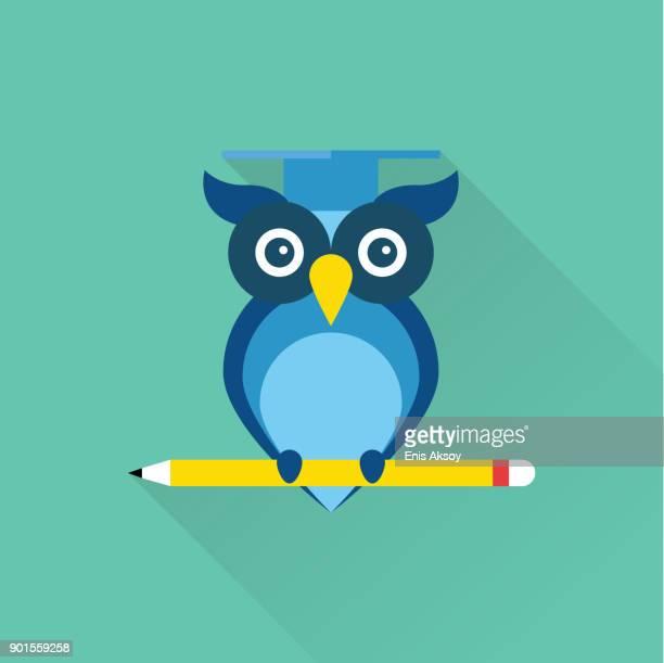 flache symbol der weisheit - literatur stock-grafiken, -clipart, -cartoons und -symbole
