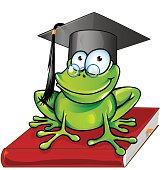 Wise frog  cartoon