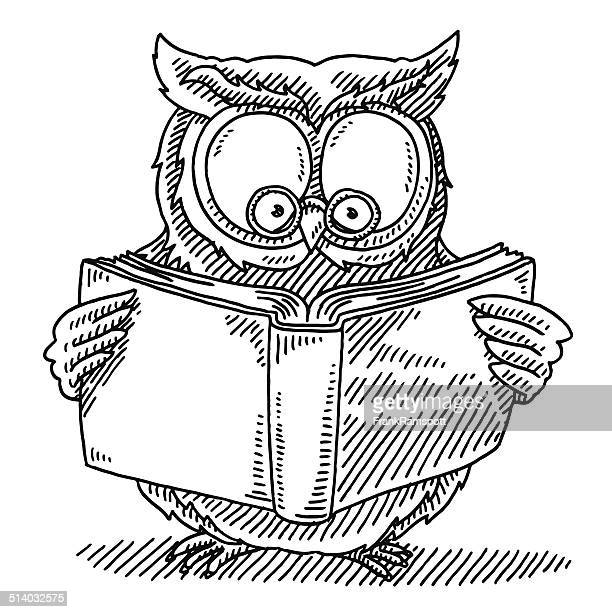 wise owl reading book drawing - owl stock illustrations