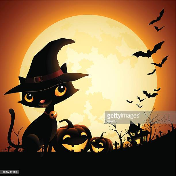 witch cat - moonlight - halloween cats stock illustrations