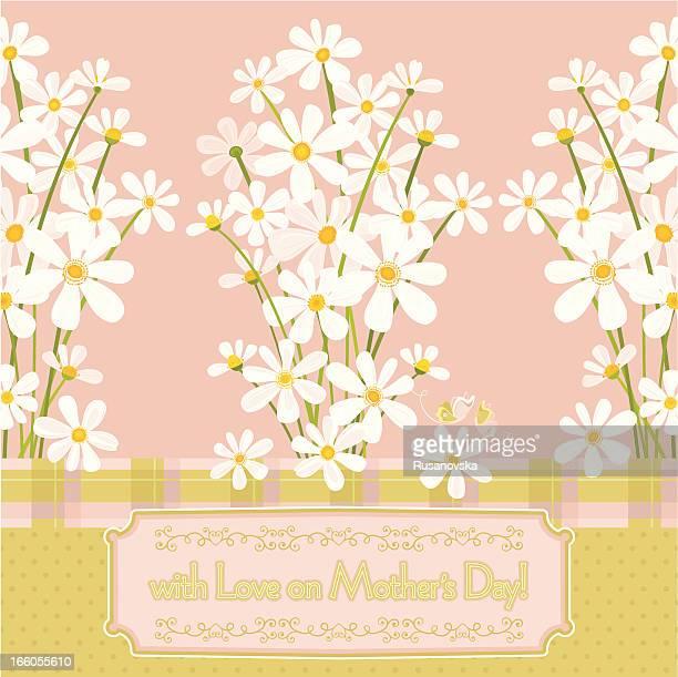 ilustraciones, imágenes clip art, dibujos animados e iconos de stock de con amor sobre el día de la madre. (tarjeta de felicitación) - planta de manzanilla