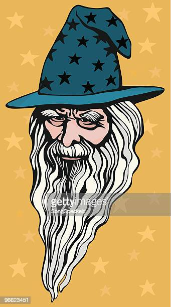 wizard portrait - wizard stock illustrations, clip art, cartoons, & icons