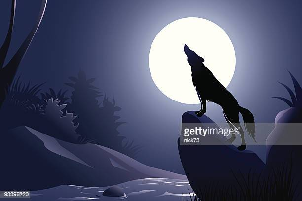 wolf background - howling stock illustrations, clip art, cartoons, & icons