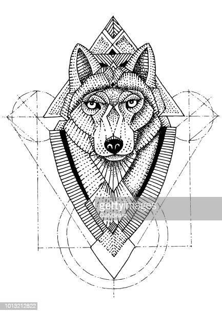 ilustrações de stock, clip art, desenhos animados e ícones de wolf geometric - lobo