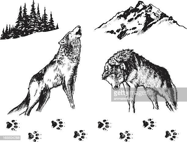 wolf - graphic elements - howling stock illustrations, clip art, cartoons, & icons