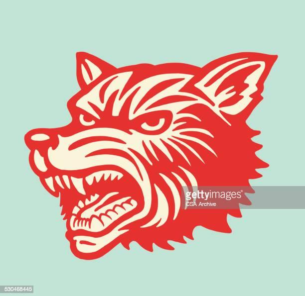 ilustrações de stock, clip art, desenhos animados e ícones de cabeça de lobo - lobo
