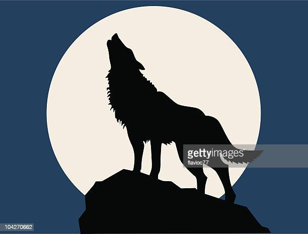 wolf howling at the full moon - howling stock illustrations, clip art, cartoons, & icons
