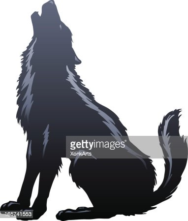 wolf howling silhouette vector art getty images