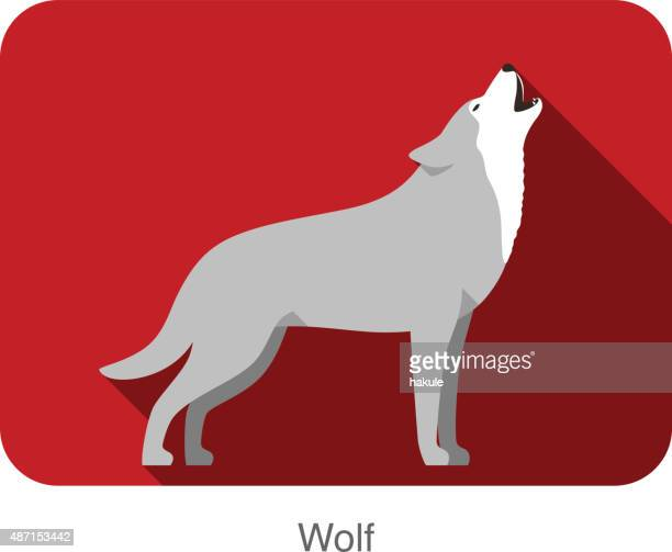wolf standing and roaring - animal body stock illustrations