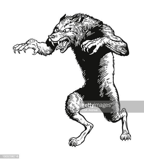 wolf - agression stock illustrations, clip art, cartoons, & icons