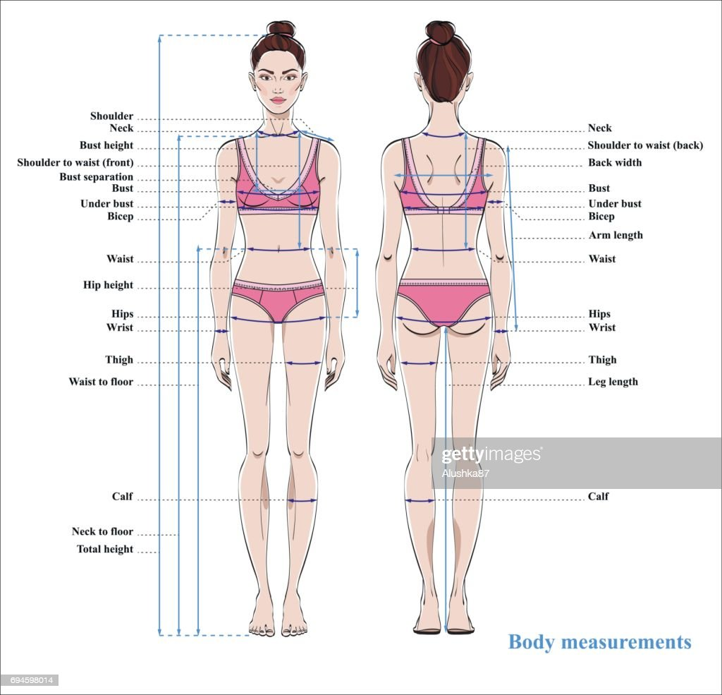 Female Measurement Diagram - Schematic Wiring Diagrams •