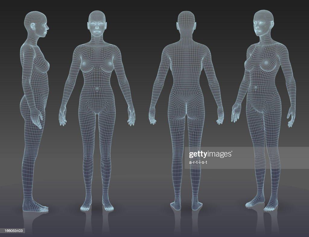 Woman body set