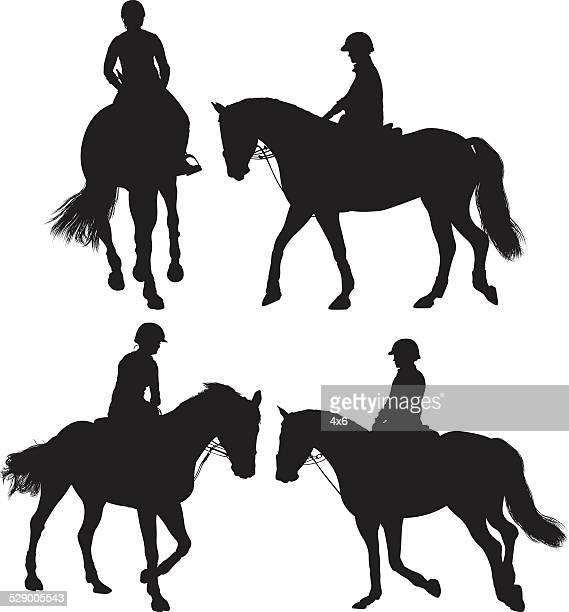 woman equestrian riding horse - horseback riding stock illustrations, clip art, cartoons, & icons
