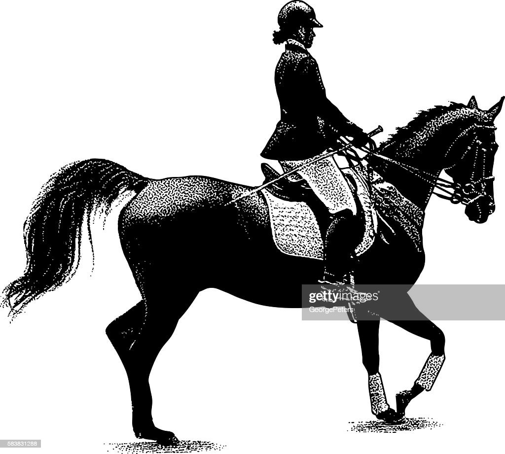 Woman Horseback Riding Equestrian Style High Res Vector Graphic Getty Images