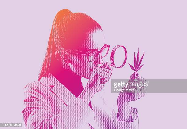 woman lab technician analyzing cannabis leaf - one mid adult woman only stock illustrations