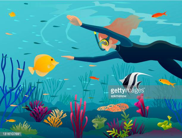 woman under water with coral fishes - snorkel stock illustrations