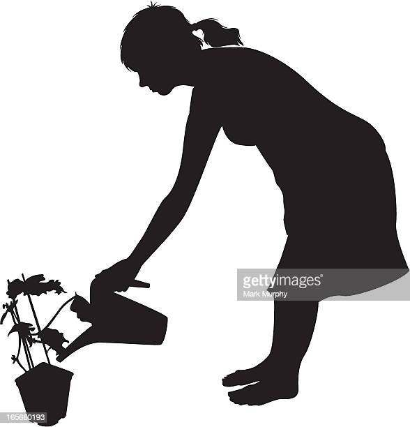 woman watering house plant - bending over stock illustrations, clip art, cartoons, & icons