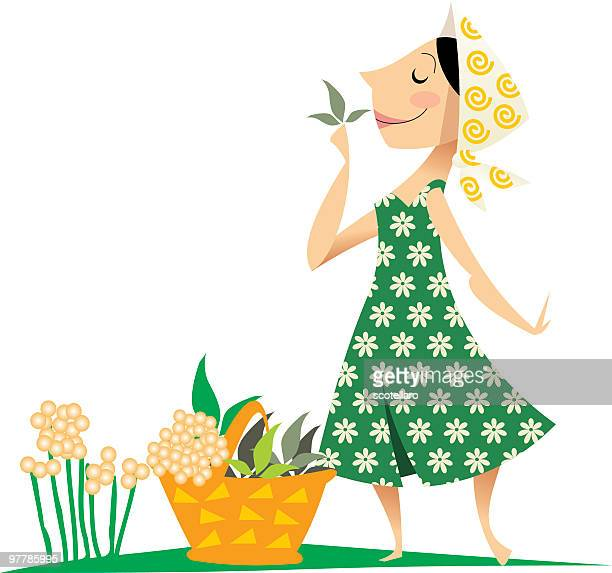 woman with herbs - green dress stock illustrations