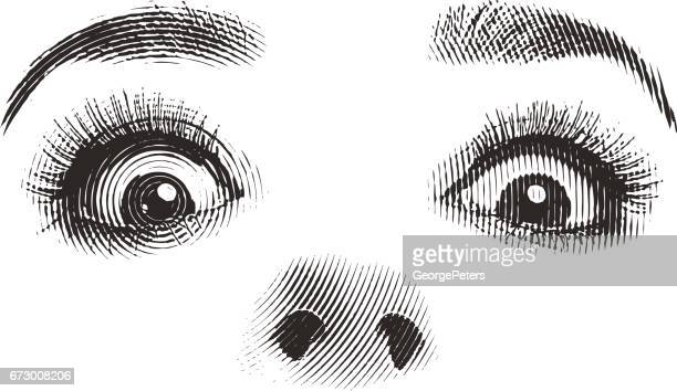Woman's eyes and nose Isolated on white.
