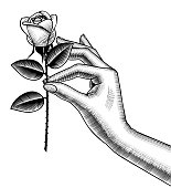 Woman's hand holding a white rose