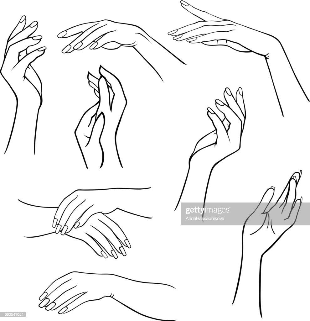 Woman's hands set