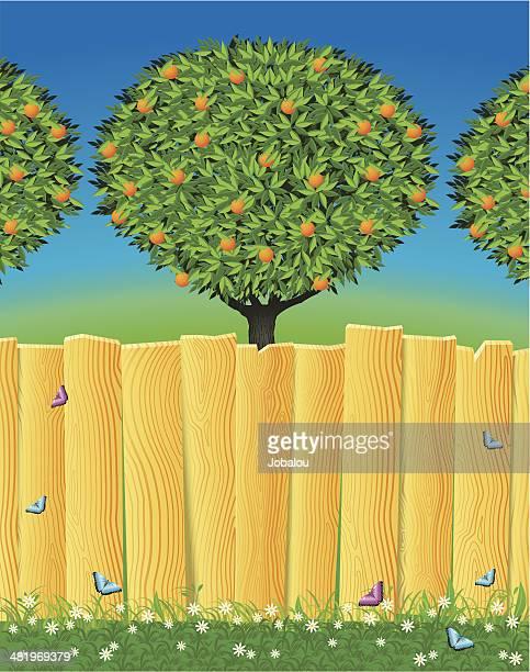 ilustrações de stock, clip art, desenhos animados e ícones de cercas de madeira - laranjeira
