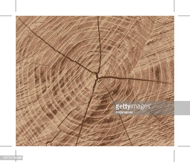 wood texture - tree rings stock illustrations, clip art, cartoons, & icons